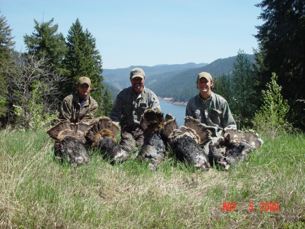 My dad, Nick & I with turkeys near Dworshak Reservoir, ID.  Nick & I have killed gobblers in 5 states together and, still maintain a yearly hunt in Kansas.