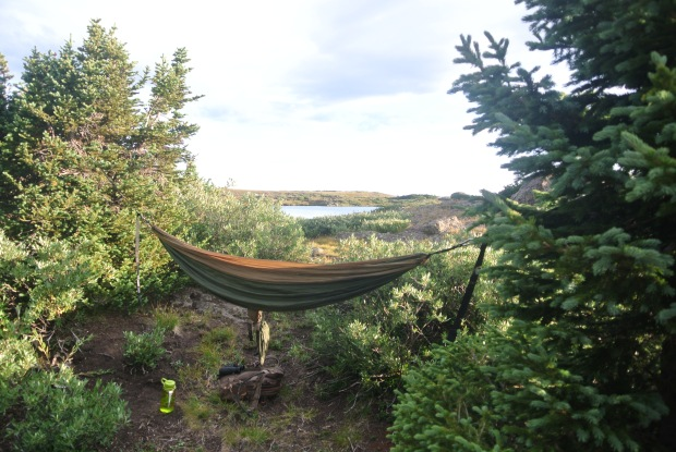Here is my bed for the night up on top of the mountain. I tied my hammock to the two tallest trees up there and, still slept with my butt on the ground.