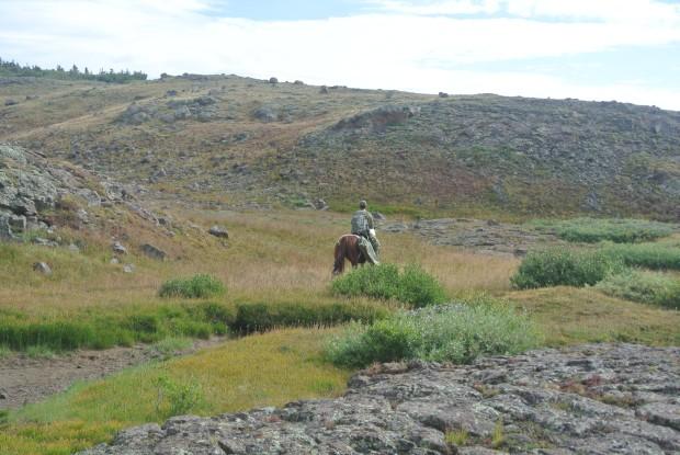 Elk hunt 2013 045