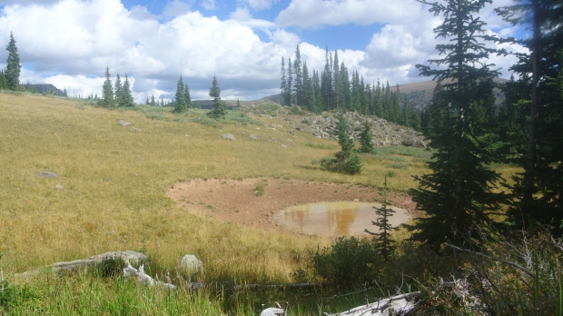 Where Travis & I glassed the herd of elk a few days before.