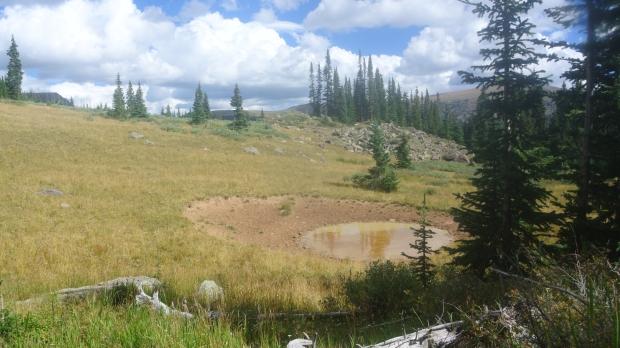 Where Travis & I glassed the herd of elk a few days before.