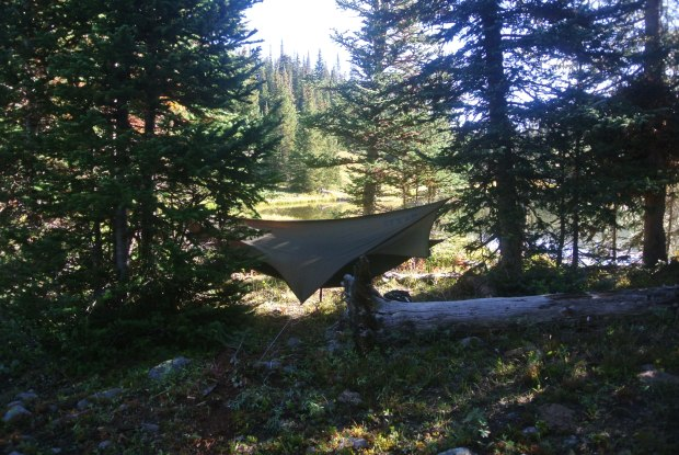 Matt's Eagle Nest Outfitters Hammock.  We chose to sleep in these instead of tents.  They are more comfortable and pack down to the size of Grapefruit.