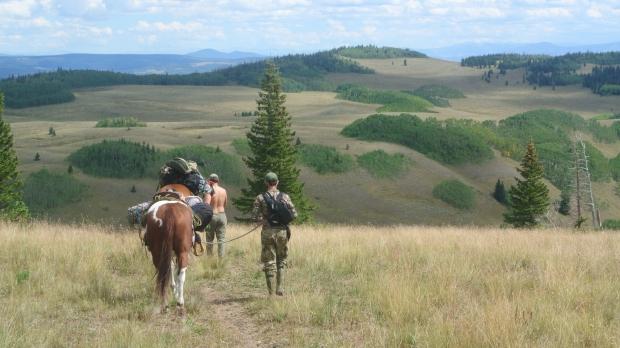 Elk hunt 2013 137